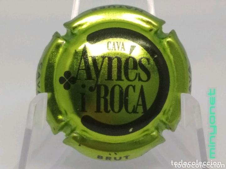 PLACA DE CAVA AYNÉS I ROCA (Coleccionismo - Botellas y Bebidas - Cava)