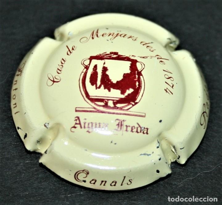 PLACA DE CAVA - ANTONI CANALS NADAL - CASA DE MENJARS DES DE 1874 - AIGUA FREDA (Coleccionismo - Botellas y Bebidas - Cava)
