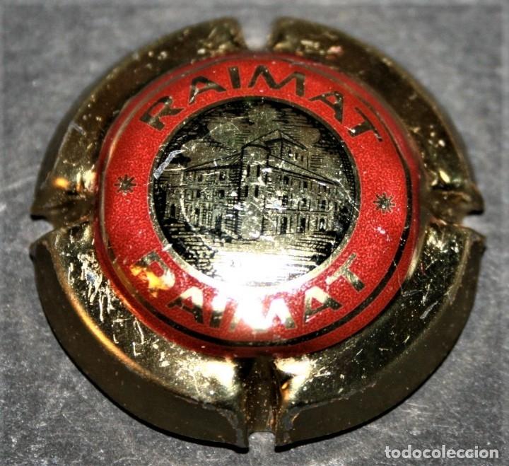 PLACA DE CAVA - RAIMAT (Coleccionismo - Botellas y Bebidas - Cava)