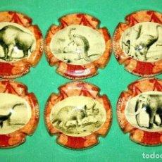 Coleccionismo de cava: 6 PLACAS DE CAVA GENERICO ( ANIMALES PREHISTORICOS ) XAPES.NET. Lote 179191481