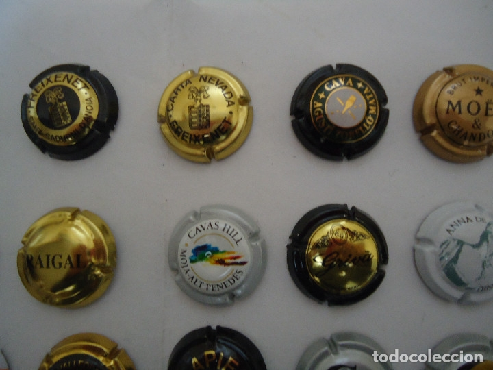 Coleccionismo de cava: COLECCION DE 45 CHAPAS DE CAVA DIFERENTES. --- 6 - Foto 3 - 183324792