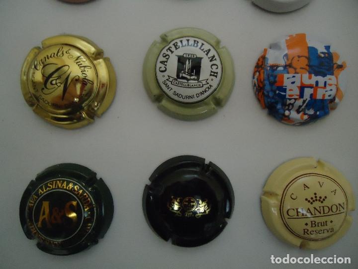Coleccionismo de cava: COLECCION DE 45 CHAPAS DE CAVA DIFERENTES. --- 6 - Foto 4 - 183324792