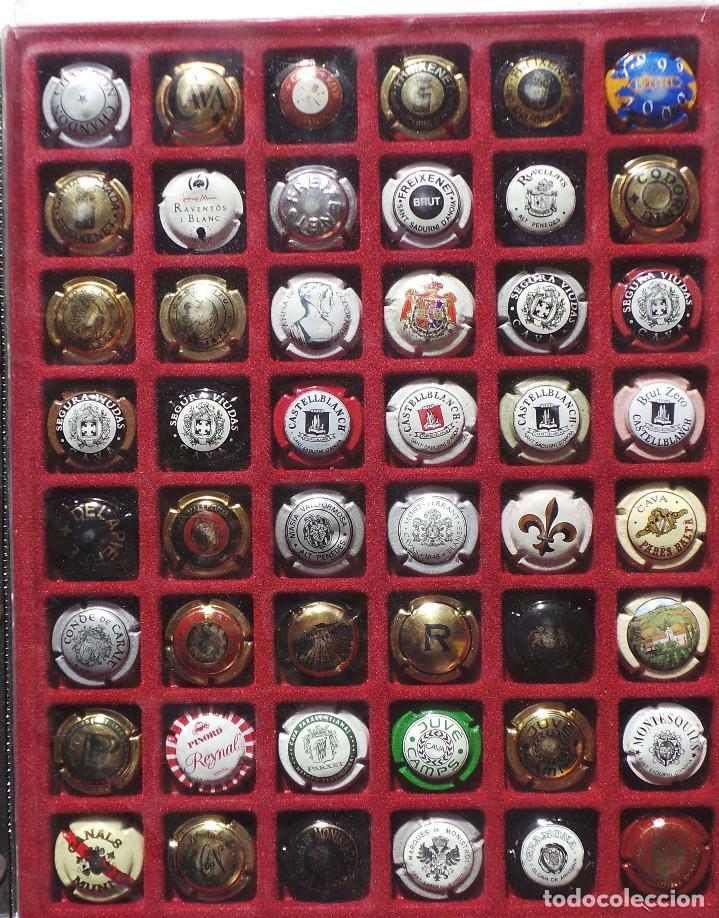 Coleccionismo de cava: LOTE DE CHAPAS. PLACAS DE CAVA. CAMPÁN. SE VENDE TODO LO DE LA FOTOGRAFÍA. - Foto 2 - 183464803