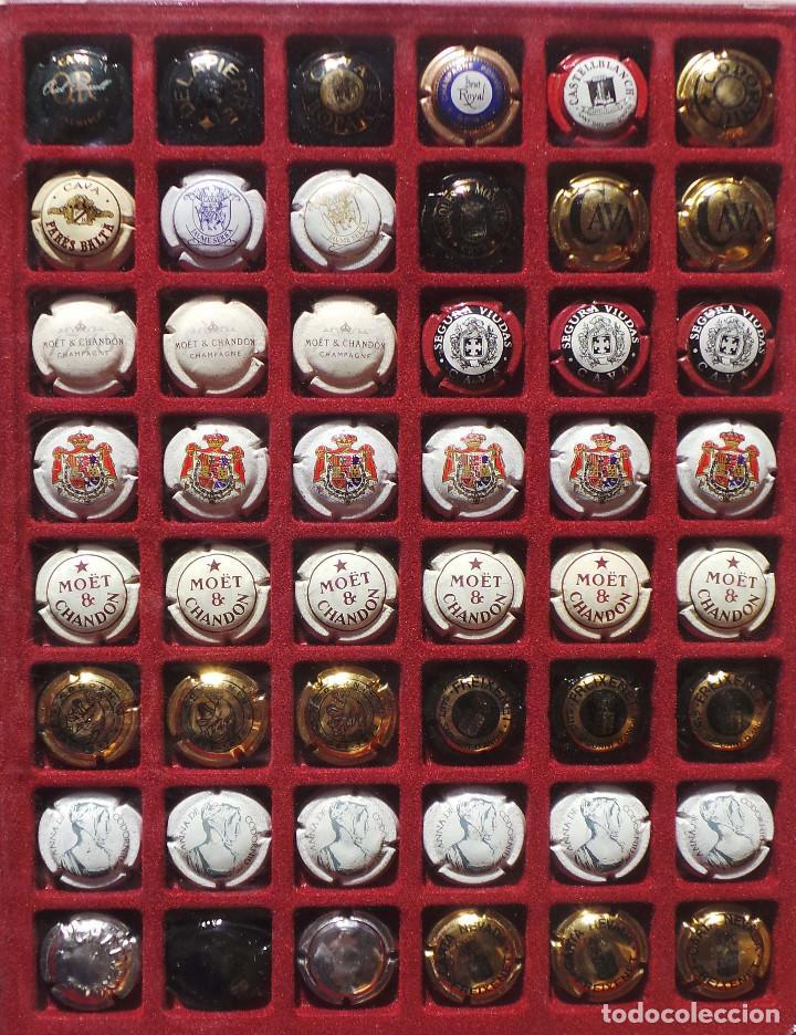 Coleccionismo de cava: LOTE DE CHAPAS. PLACAS DE CAVA. CAMPÁN. SE VENDE TODO LO DE LA FOTOGRAFÍA. - Foto 3 - 183464803