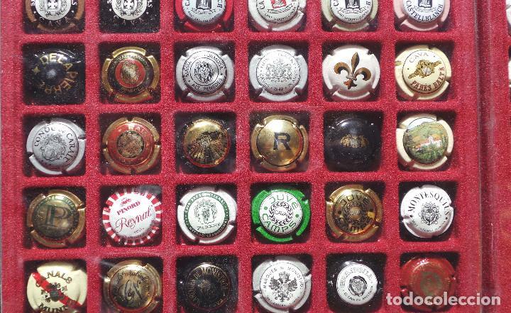 Coleccionismo de cava: LOTE DE CHAPAS. PLACAS DE CAVA. CAMPÁN. SE VENDE TODO LO DE LA FOTOGRAFÍA. - Foto 6 - 183464803