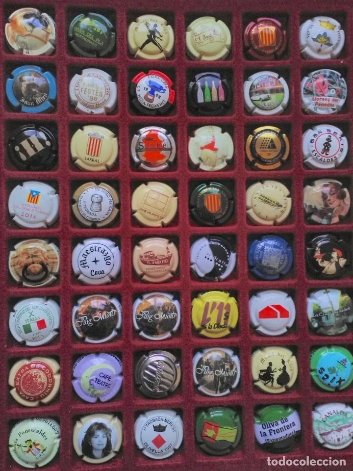 48 PLACAS DE CAVA PIRULAS DIFERENTES Nº 4 (Coleccionismo - Botellas y Bebidas - Cava)