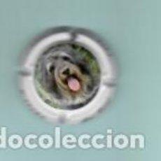 Coleccionismo de cava: COLECCIÓN DE 6 PLACAS DE CAVA MONT MARÇAL. EDICIÓN ANIMALES. Lote 194130727