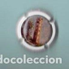 Coleccionismo de cava: CHAPA DE CAVA CASA LACRIMA BACCUS BLANCO. Lote 194986550