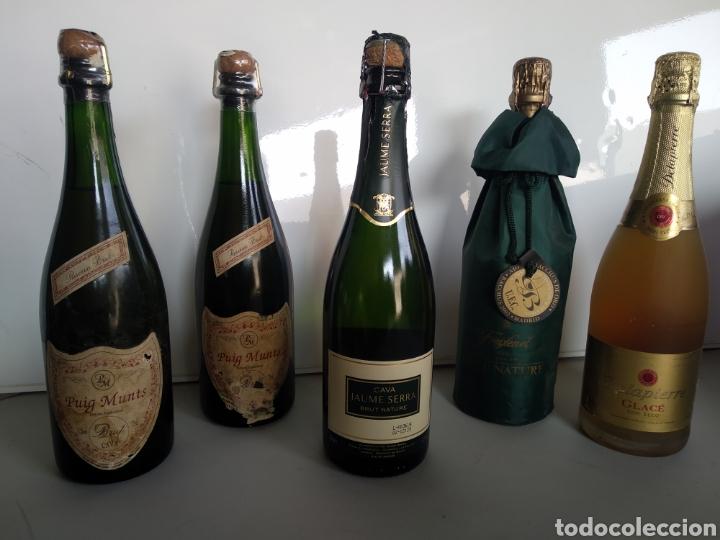 LOTE DE BOTELLAS DE CAVA , DELAPIERRE, PUIG MUNTS , JAUME SERRA, FREIXANET (Coleccionismo - Botellas y Bebidas - Cava)