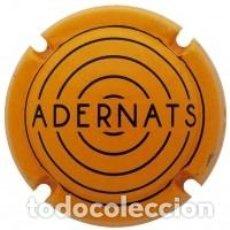 Coleccionismo de cava: PLACA DE CAVA - VINICOLA DE NULLES - X 183604. Lote 211606120