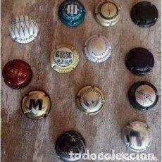Coleccionismo de cava: COLECCIÓN DE 13 PLACA . CHAPA CHAPAS DE CAVA PARA COLECCIONISTAS.. Lote 235836190