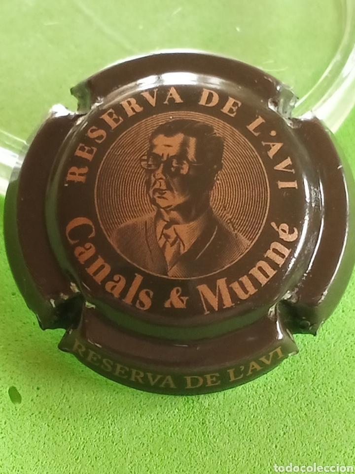 CHAPA CAVA. CANALS Y MUNNE. RESERVA DEL AVI. (Coleccionismo - Botellas y Bebidas - Cava)
