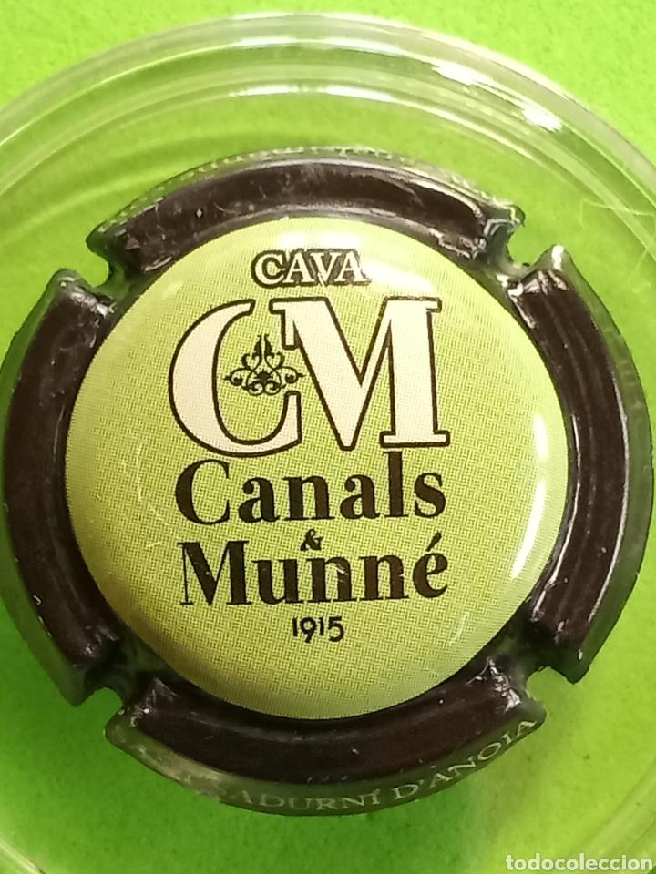 CHAPA CAVA CANALS Y MUNNE (Coleccionismo - Botellas y Bebidas - Cava)