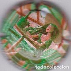 Coleccionismo de cava: PLACA CAVA. Lote 244767510