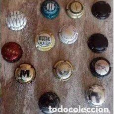 Coleccionismo de cava: COLECCIÓN DE 13 PLACA . CHAPA CHAPAS DE CAVA PARA COLECCIONISTAS.. Lote 247614345