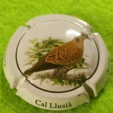 Coleccionismo de cava: CHAPA CAVA CAL LLUSIA ARTÉS. Lote 262310775