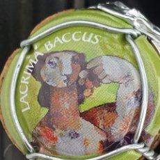 Coleccionismo de cava: CHAPA CAVA. LACRIMA BACCUS. NOVEDAD. Lote 278853383