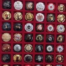 Coleccionismo de cava: 48 PLACAS DE CAVA DIFERENTES. Lote 288657523