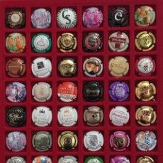 Coleccionismo de cava: 48 PLACAS DE CAVA DIFERENTES. Lote 288657578