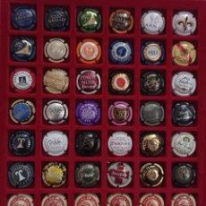 Coleccionismo de cava: 48 PLACAS DE CAVA DIFERENTES. Lote 288657618