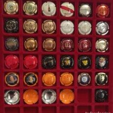 Coleccionismo de cava: 31 PLACAS DE CAVA - CHAMPAGNE EXTRANJERAS DIFERENTES. Lote 288657798
