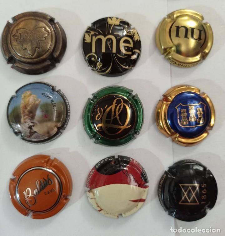 9 PLACAS DE CAVA DIFERENTES (Coleccionismo - Botellas y Bebidas - Cava)