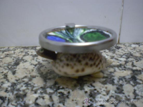 Ceniceros: CENICERO TORTUGA - Foto 2 - 33513694
