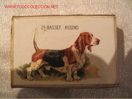 Cajas de Cerillas: 16 cajas cerillas de Belgica - Foto 7 - 6098736