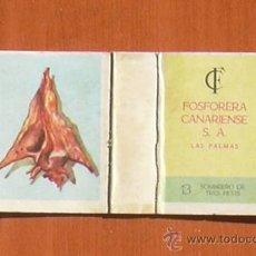 Cajas de Cerillas: CAJA DE CERILLAS - FOSFORERA CANARIENSE - CARACOLAS MARINAS Nº 13. Lote 11603074