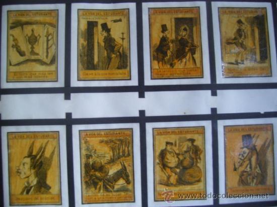 LOTE DE CAJAS DE CERILLAS NUNCA VISTO - RARISIMO POR LA VARIEDAD Y POR SU CONSERVACION - VER FOTOS (Coleccionismo - Objetos para Fumar - Cajas de Cerillas)