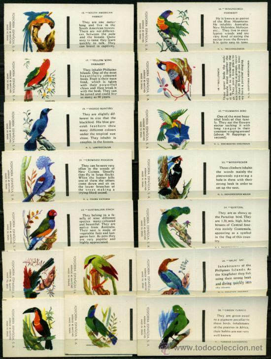 Cajas de Cerillas: 30 CAJAS DE CERILLAS FOSFORERA ESPAÑOLA - PAJAROS - Foto 2 - 36756989