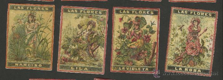 Cajas de Cerillas: LAS FLORES - COLECCION 15 CROMOS CAJAS DE CERILLAS - (V-1155) - Foto 4 - 44428689