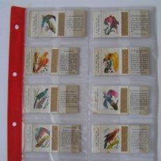 Cajas de Cerillas: OFERTA ESPECIAL CERILLAS: LOTE DE 11 CAJAS CERILLAS DE: AVES TROPICALES - FOSFORERA ESPAÑOLA .. Lote 44554547