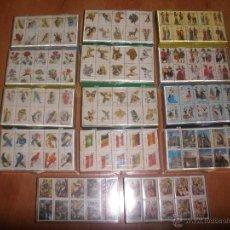 Cajas de Cerillas: CAJAS DE CERILLAS EN ESTUCHES OFICIALES FESA. Lote 45142627