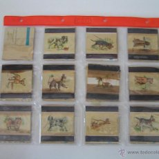 Cajas de Cerillas: OFERTA ESPECIAL CERILLAS. - 20 CARTONES DE CAJAS CERILLAS ANTIGUAS.- PERROS - FOSFORERA. Lote 45688443