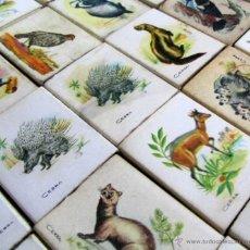 Cajas de Cerillas: 40 CAJAS DE CERILLAS CAZA MENOR. Lote 50055037