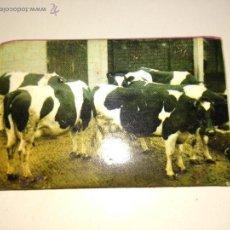 Cajas de Cerillas - Cerillas con publicidad de la caja rural de Vizcaya - 50952883