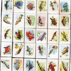Cajas de Cerillas: CAJAS DE CERILLAS FESA SERIE COMPLETA FAUNA FLUVIAL. Lote 53745438