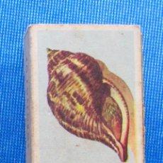 Cajas de Cerillas: 8.- CONCHA TULIPÁN. CARACOLAS. FOSFORERA CANARIENSE. CAJA CERILLAS. Lote 59220647
