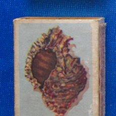 Cajas de Cerillas: 21.- MUREX MANZANA. CARACOLAS. FOSFORERA CANARIENSE. CAJA CERILLAS. Lote 54514158