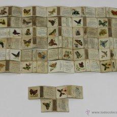 Cajas de Cerillas: COLECCION DE 33 CAJAS DE CERILLAS. SERIE MARIPOSAS. FOSFORERA ESPAÑOLA. SIGLO XX.. Lote 49412353
