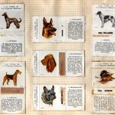 Cajas de Cerillas: FOSFORERA ESPAÑOLA SERIE PERROS. Lote 55938037