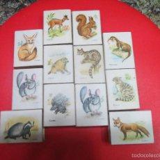 Cajas de Cerillas: 13 CAJAS DE CERILLAS CAZA MENOR. Lote 60416987