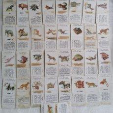 Cajas de Cerillas: LOTE 33 CAJAS CERILLAS DE ANIMALES. FÓSFORERA ESPAÑOLA.. Lote 62020744