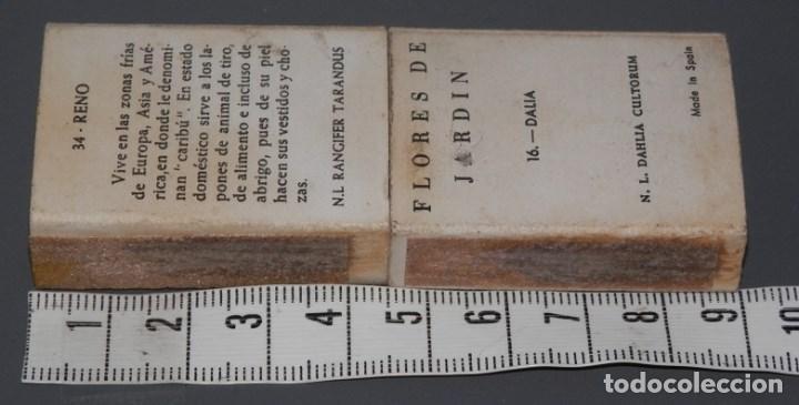 Cajas de Cerillas: CAJAS DE CERILLAS ANTIGUAS - Foto 2 - 79337597