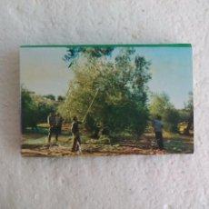 Cajas de Cerillas: CAJA RURAL. CAMINO A UN FUTURO MEJOR. CAJA DE CERILLAS MATCHBOX ALLUMETTES MATCHES. Lote 98506463