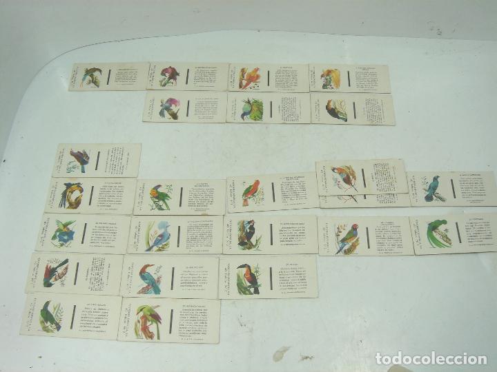 COLECCION 23X CERILLAS PLANCHA - PAJAROS - DE CAJAS FOSOFORERA ESPAÑOLA CAJA (Coleccionismo - Objetos para Fumar - Cajas de Cerillas)