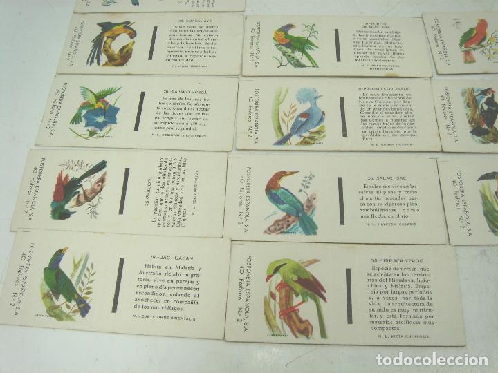 Cajas de Cerillas: COLECCION 23X CERILLAS PLANCHA - PAJAROS - DE CAJAS FOSOFORERA ESPAÑOLA CAJA - Foto 2 - 112962943