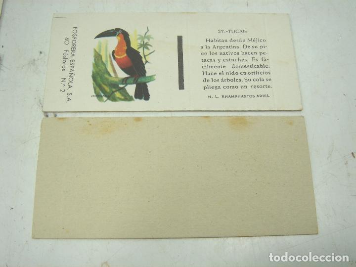 Cajas de Cerillas: COLECCION 23X CERILLAS PLANCHA - PAJAROS - DE CAJAS FOSOFORERA ESPAÑOLA CAJA - Foto 4 - 112962943