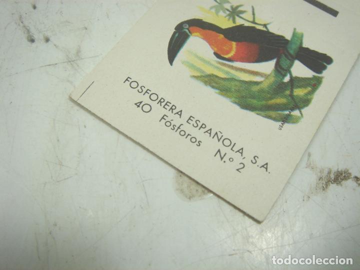 Cajas de Cerillas: COLECCION 23X CERILLAS PLANCHA - PAJAROS - DE CAJAS FOSOFORERA ESPAÑOLA CAJA - Foto 5 - 112962943